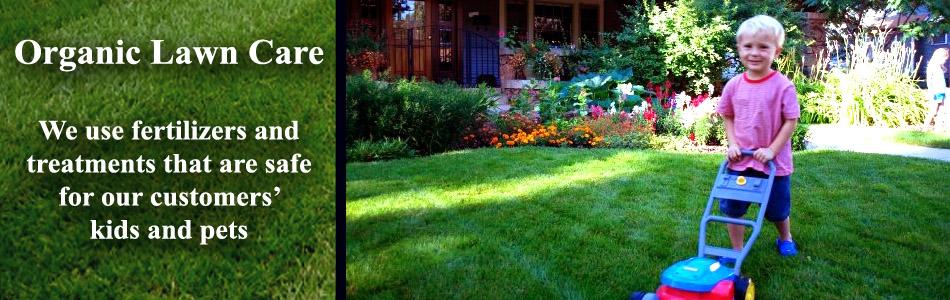 Safe Organic Lawn Care